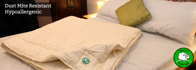 Baavet wool duvets and pillows