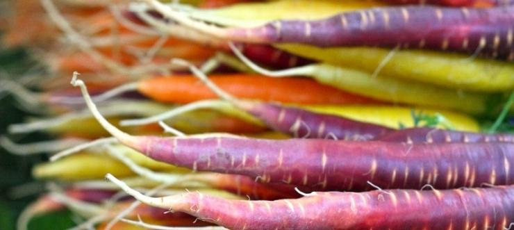 organic fruit and veg ireland