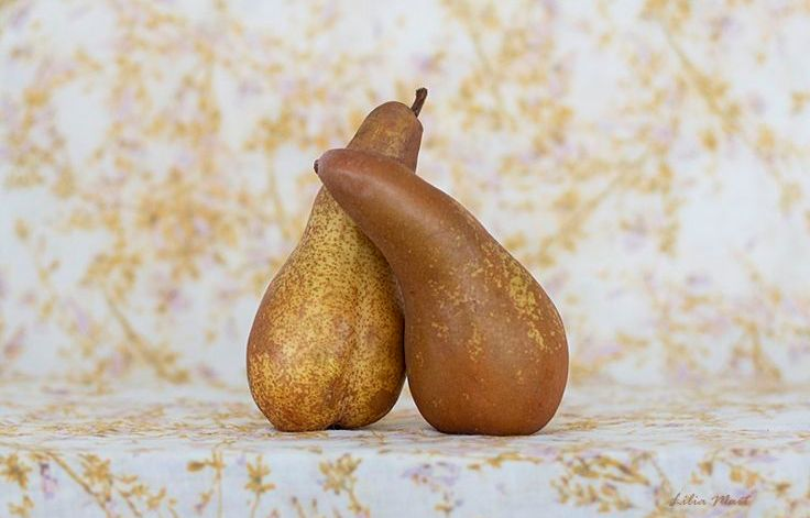 Lilia Siedel Hugging Pears
