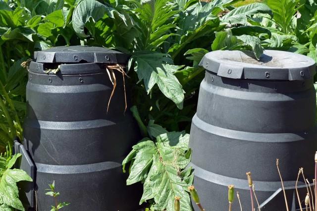 Green Compost Cones
