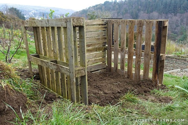 compost bin made from pallet