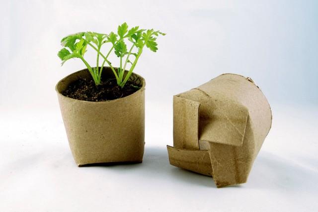 Pots from Toilet Rolls