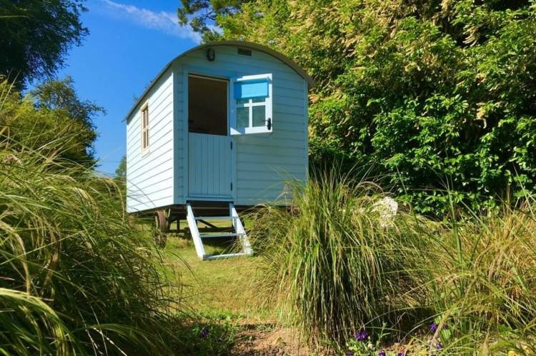 photo of hut near wood