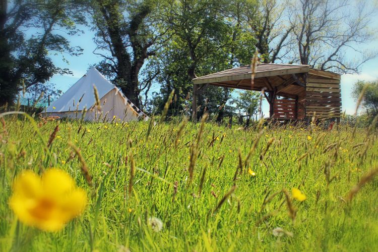 eco campsite in Pembrokeshire