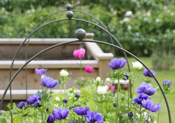Somerset Cloche Hoops from Agriframes
