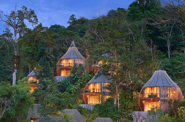 chalet in jungle